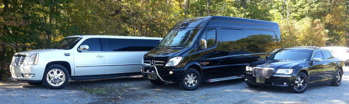 Benz Mini Coach by Riviera Limousines | Hackettstown, NJ