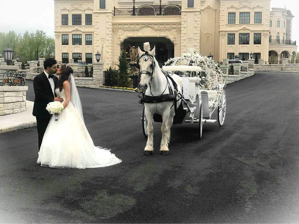 The Legacy Castle Cinderella Wedding | Dream Horse Carriage Company