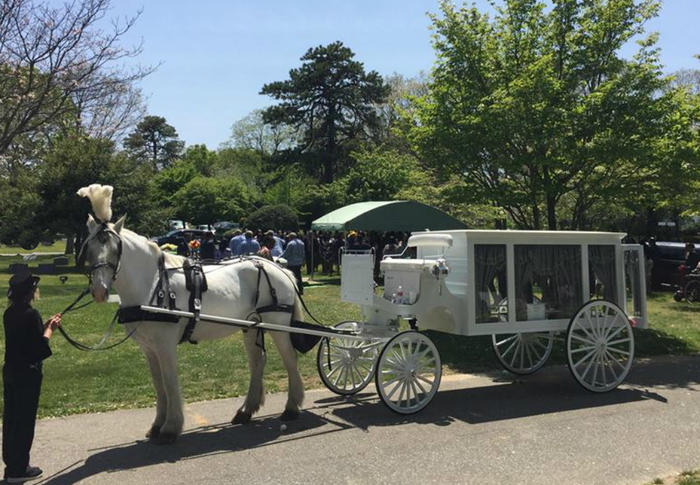 Horse Drawn Hearse and Caisson Funerals NJ and NY