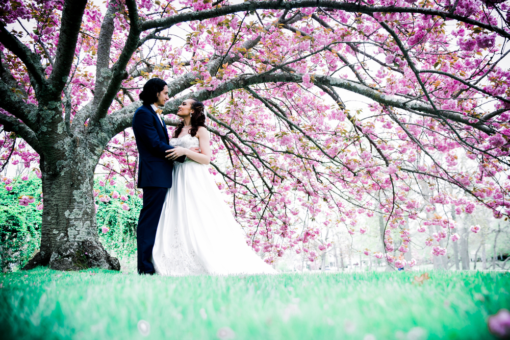 Spectacular Spring Wedding Photos and Videos