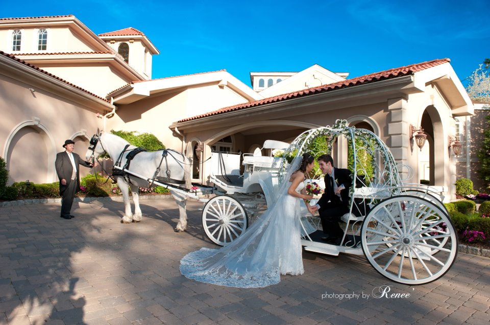 Dream Horse Carriage Company Reviews