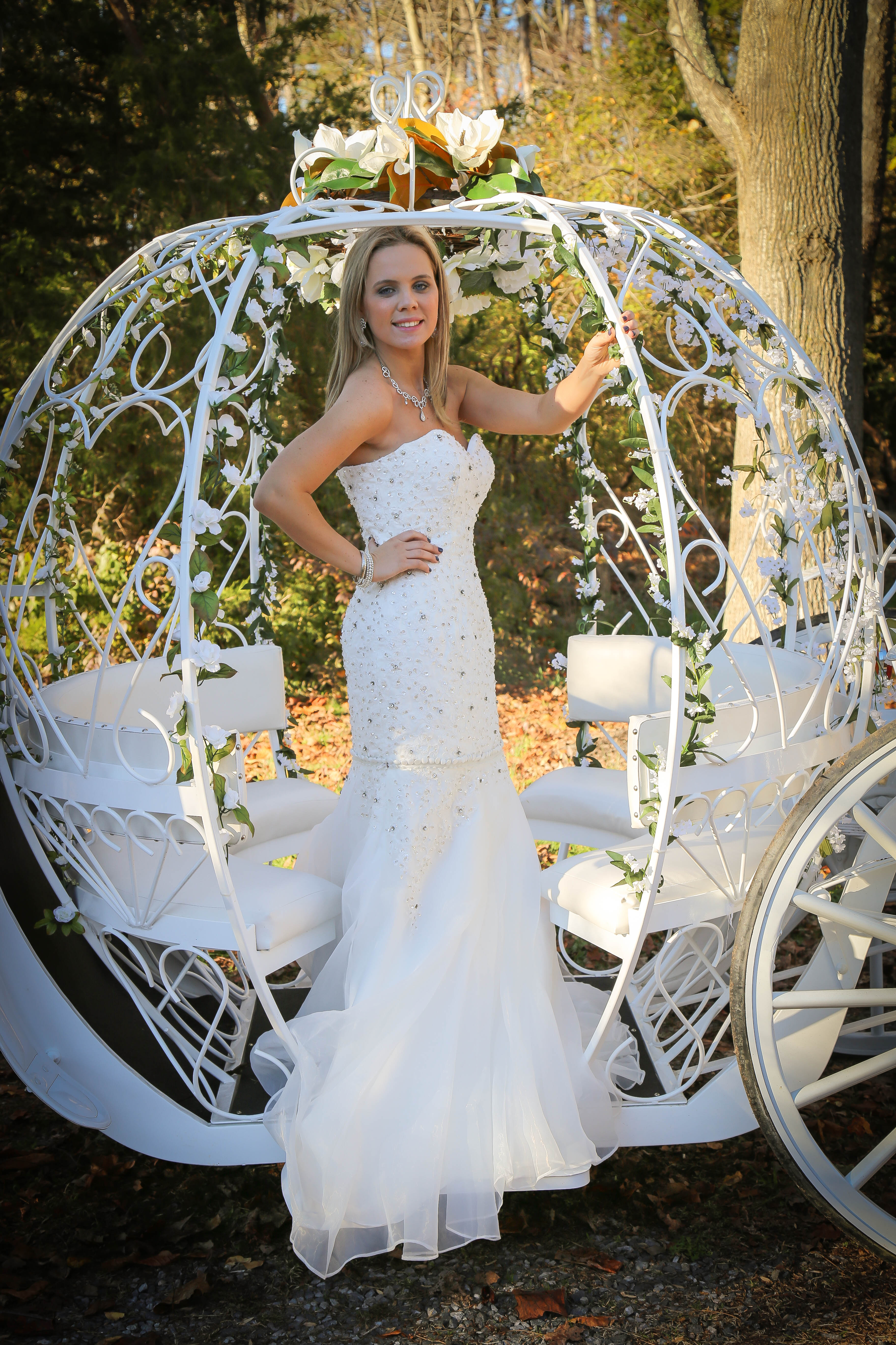Dream Horse Carriage Company - Cinderella Carriages - NJ Weddings