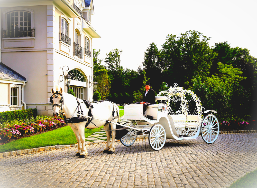 Cinderella Carriage wedding Park Chateau